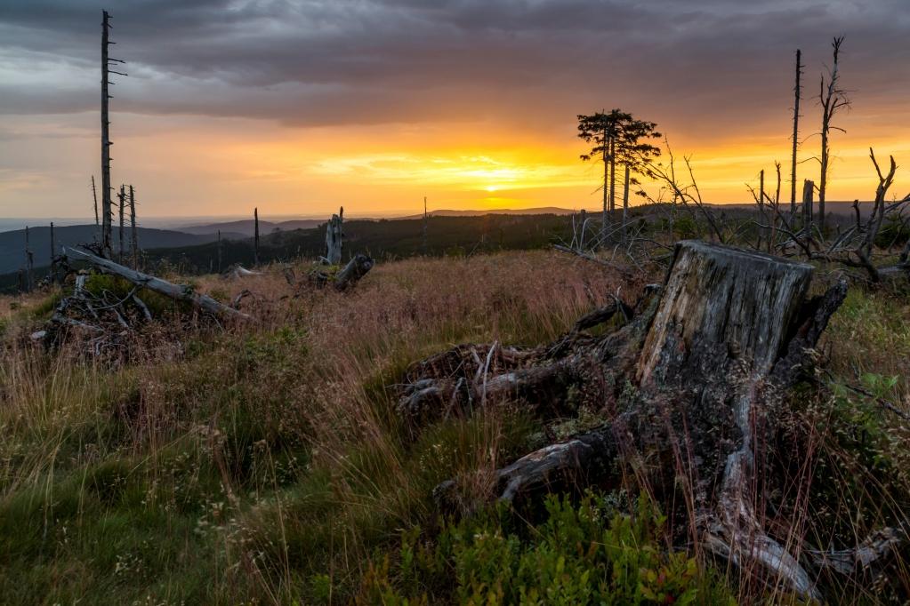 Jiří Hudec - Tour Nr. 19 - Krása přírodních živlů - kdy se spojí pozůstatky stromů po orkánu Kiril a kouzelný východ slunce po noční bouřce
